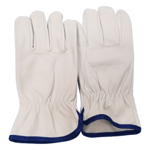 Soft Goat Skin Gloves